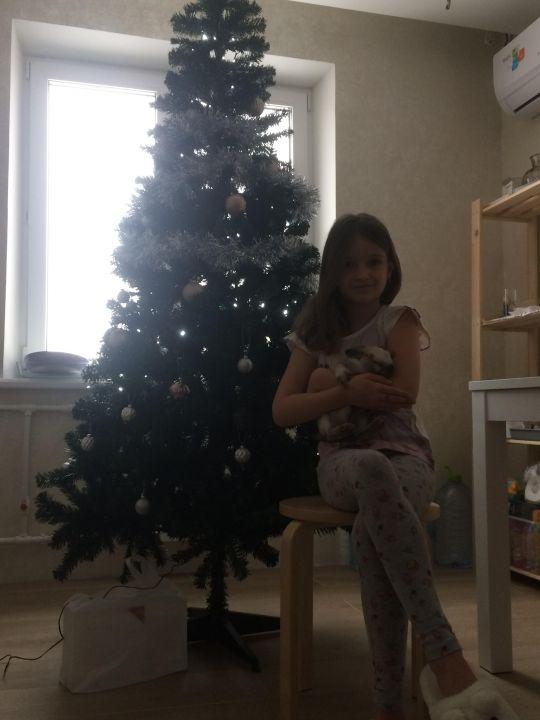 София Андреевна Дорохина