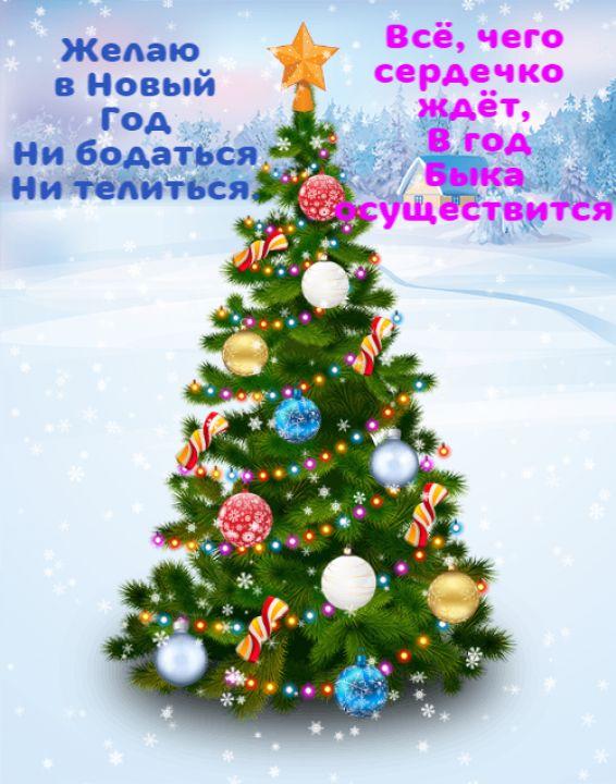 Екатерина Степановна Волошина