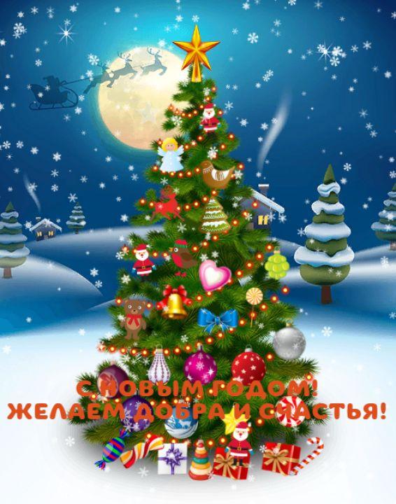 Анастасия Евгеньевна Тенгайкина