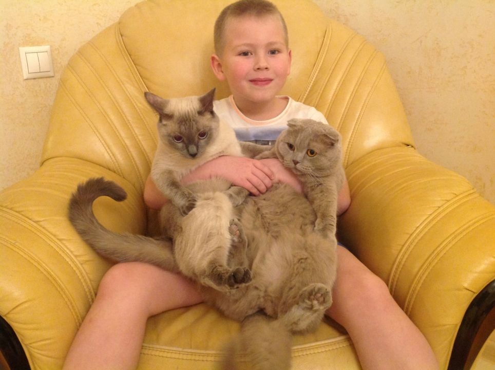 Кошутин Максим Евгеньевич
