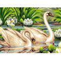"""Набор для рисования по номерам Цветной """"Лебеди и лотосы"""", 30 x 40 см"""