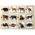 Smile Decor Обучающая игра Секретики Зоопарк