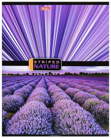 Hatber Тетрадь Полосатый мир 96 листов в линейку цвет лавандовый