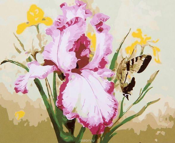 "Картина по номерам Школа талантов ""Ирис с бабочкой"", 2452194, 30 х 40 см"
